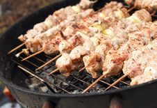 Free Barbecue Meat Sticks On Mangal Royalty Free Stock Photo - 19339385
