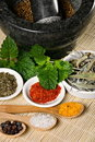Free Spices Royalty Free Stock Images - 19349319