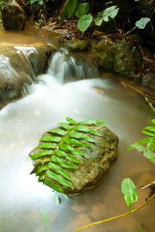 Free Small Waterfall Stock Photography - 19340932