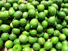Free Green Limes Stock Photos - 19341413