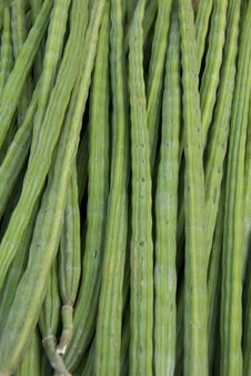 Free Long Beans Stock Images - 19342804