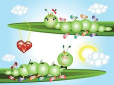 Free Caterpillars In Love Royalty Free Stock Images - 19343969