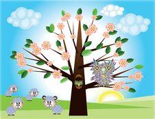 Free Tree ,owl And Sheep Stock Photos - 19344013