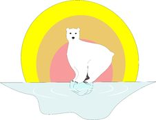 Polar Bear And The Global Warming Royalty Free Stock Images