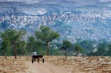 Free Dogon Man With Cart Approaching Village Royalty Free Stock Image - 19345846