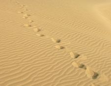 Free Footsteps In Desert Royalty Free Stock Images - 19346029
