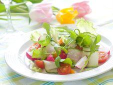 Free Salad Stock Photography - 19347092