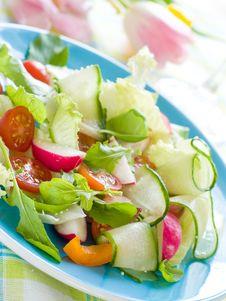 Free Salad Royalty Free Stock Photo - 19347145
