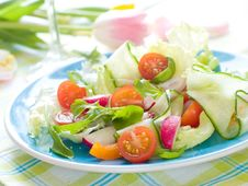 Free Salad Stock Photography - 19347152