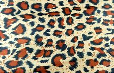Free Leopard Texture Royalty Free Stock Images - 19347399