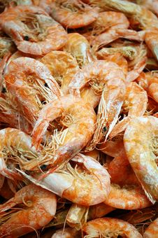 Free Dry Shrimp Stock Image - 19347521
