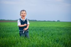Free A Beautiful Little Boy Staing In The Grass Stock Images - 19347804