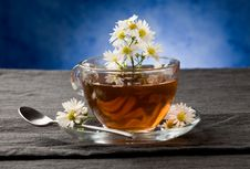 Free Chamomile With Marguerite Stock Image - 19348901