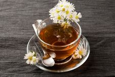 Free Chamomile With Marguerite Royalty Free Stock Photos - 19348998