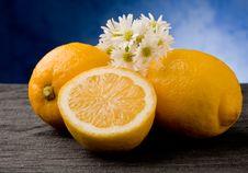 Free Lemon Stock Images - 19349244