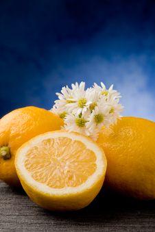 Free Lemon Royalty Free Stock Photos - 19349658