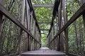 Free Mangrove Path Way Royalty Free Stock Photos - 19359938