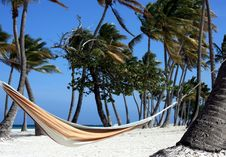 Free Hammock On Perfect Beach Stock Image - 19351891