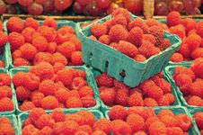 Free Fresh Raspberries Stock Image - 19355421