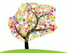 Free Flowering Tree Stock Photos - 19355453