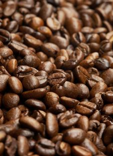 Free Coffee Roasted Beans Royalty Free Stock Photography - 19355577