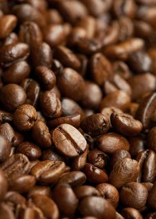 Free Coffee Roasted Beans Stock Photo - 19356190