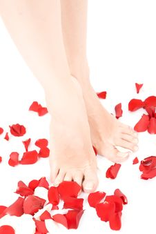 Free Footcare Royalty Free Stock Photography - 19356667