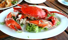 Free Cooked Crabs Stock Photo - 19357840