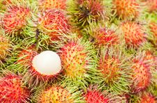 Free Tropical Fruit,Rambutan Stock Images - 19358384