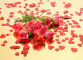 Free Pink Roses And Confetti Stock Photos - 19363833