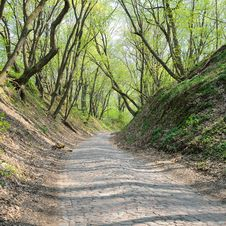 Free Ancient Stone Road Royalty Free Stock Image - 19360556