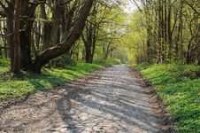 Free Ancient Stone Road Stock Image - 19360601