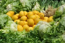 Fresh Lemons And Green Salad Ingredients Stock Photo