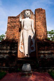 Free Buddha Royalty Free Stock Images - 19361819