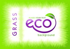 Free Eco Green Grass Background Stock Images - 19366044
