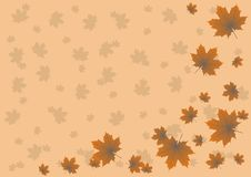 Free Maple Leaves Flying In The Autumn Background Stock Photo - 19366080