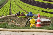 Free Irrigation Stock Images - 19367004