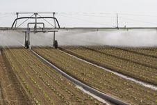 Free Sprinkler Irrigation Stock Photography - 19367152