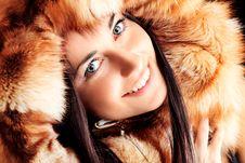 Free Fur Royalty Free Stock Photos - 19368118