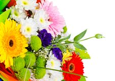 Free Bouquet Stock Image - 19369931