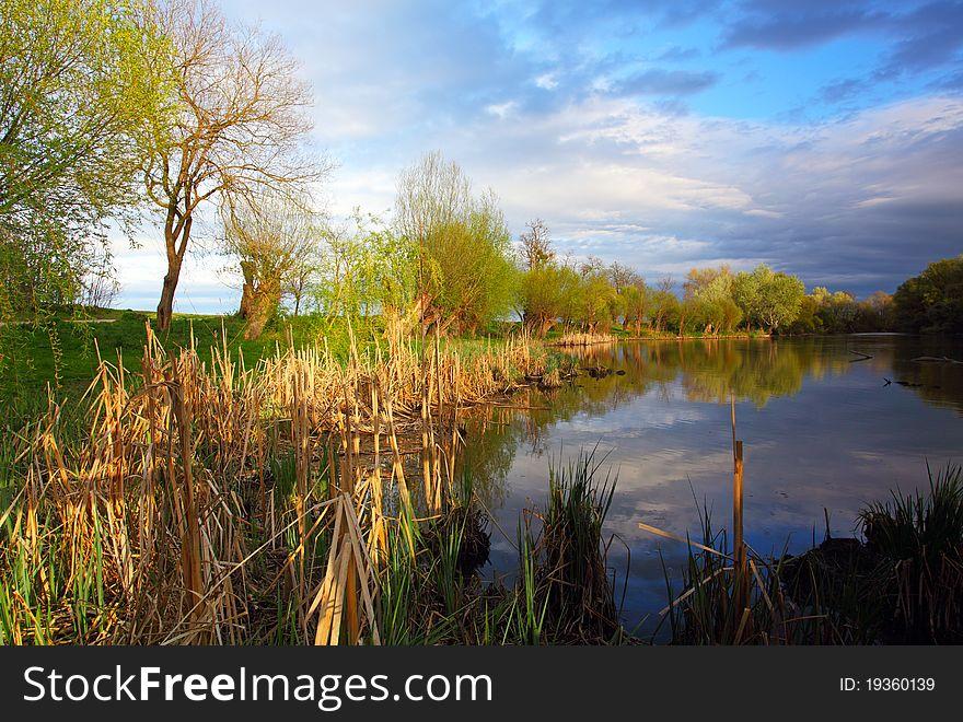 Summer landscape with river.