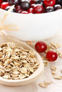 Free Oat Flakes And Berries. Stock Photography - 19374982