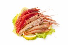 Free Seafood Stock Photography - 19370252