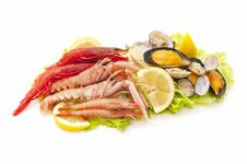 Free Seafood Royalty Free Stock Images - 19370269