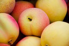 Free Yellow Apple. Royalty Free Stock Photo - 19370435