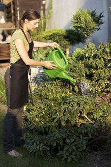 Free Woman Gardening Royalty Free Stock Images - 19370469
