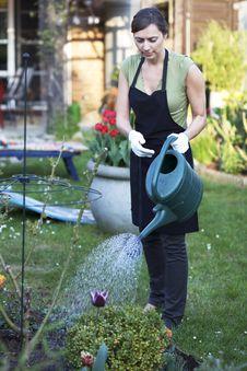 Free Woman Gardening Royalty Free Stock Image - 19370576