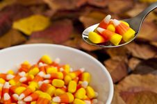 Free Candy Corn Snack Royalty Free Stock Image - 19371206
