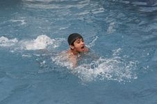 Free Swimming Stock Photo - 19371870