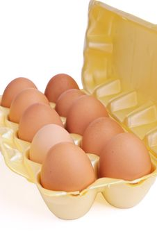 Free Eggs In Packing Royalty Free Stock Image - 19372206